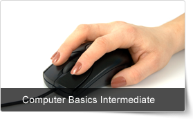 Computer Basics Intermediate Training Course